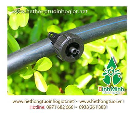 Hệ thống tưới nhỏ giọt trong nhà kính Bình Minh