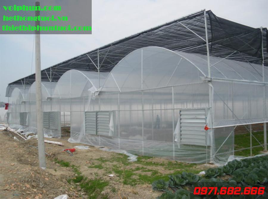 Trồng dưa lưới công nghệ cao ở Tây Ninh: Đầu tư lớn nhưng an toàn
