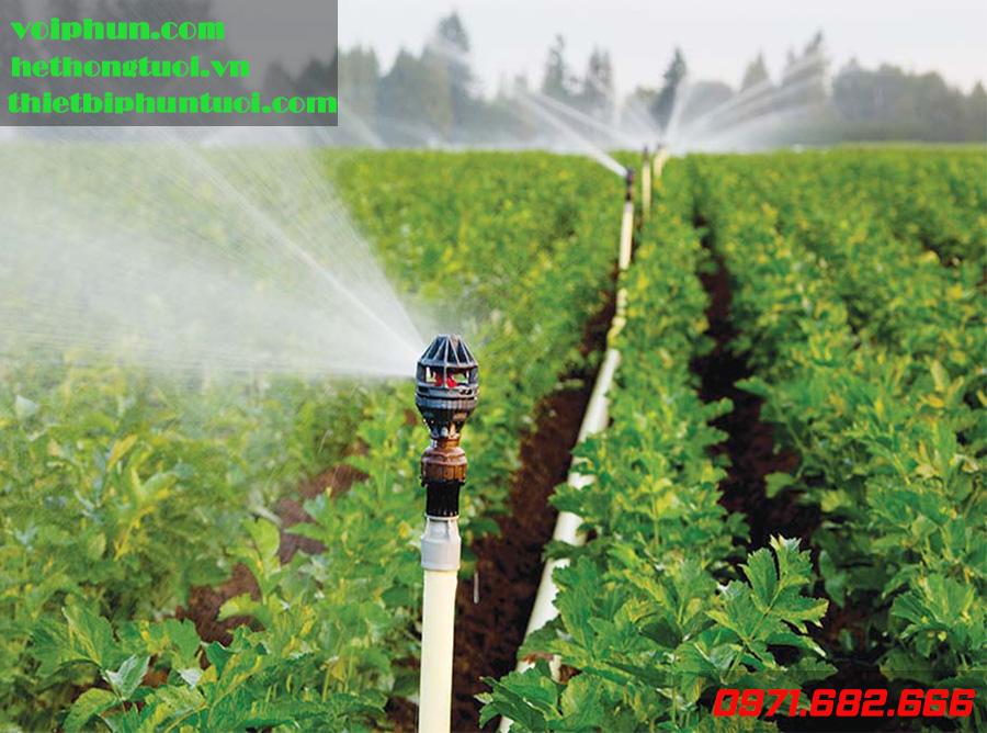 thiết bị tưới nông nghiệp, tưới phun mưa, tưới nhỏ giọt, tưới phun sương